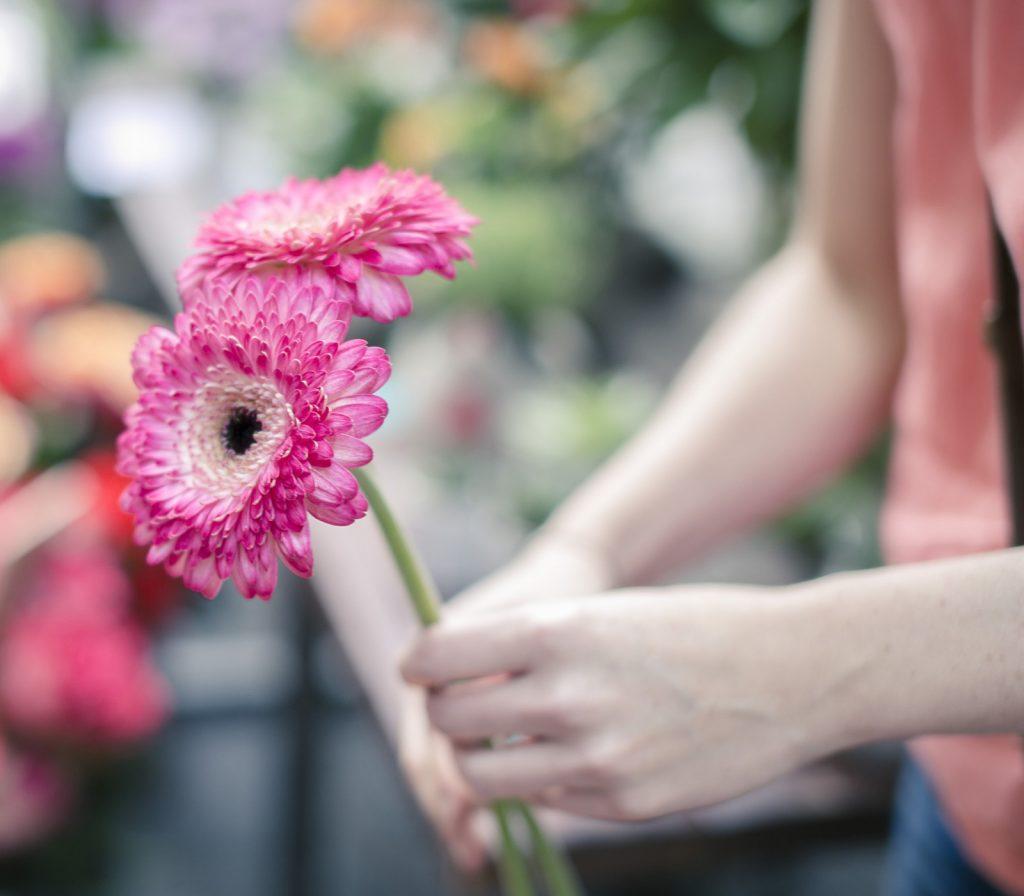 Flores frescas siempre en casa gerberas