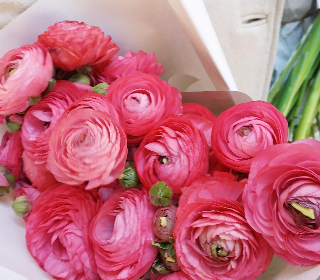Flores frescas siempre en casa