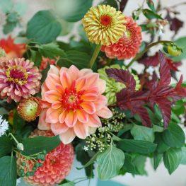 Arbolande-centro-flores-verano-dahlias-La Granja de Flowrs
